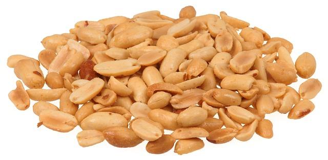 Os amendoins são seguros para cães?