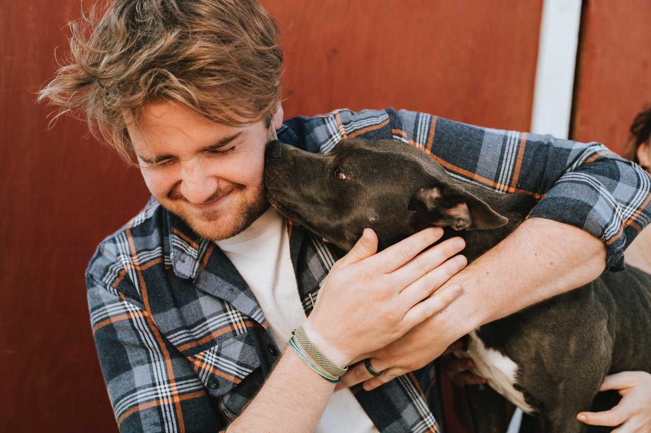 Antioxidantes para pets | O que é, usos e benefícios