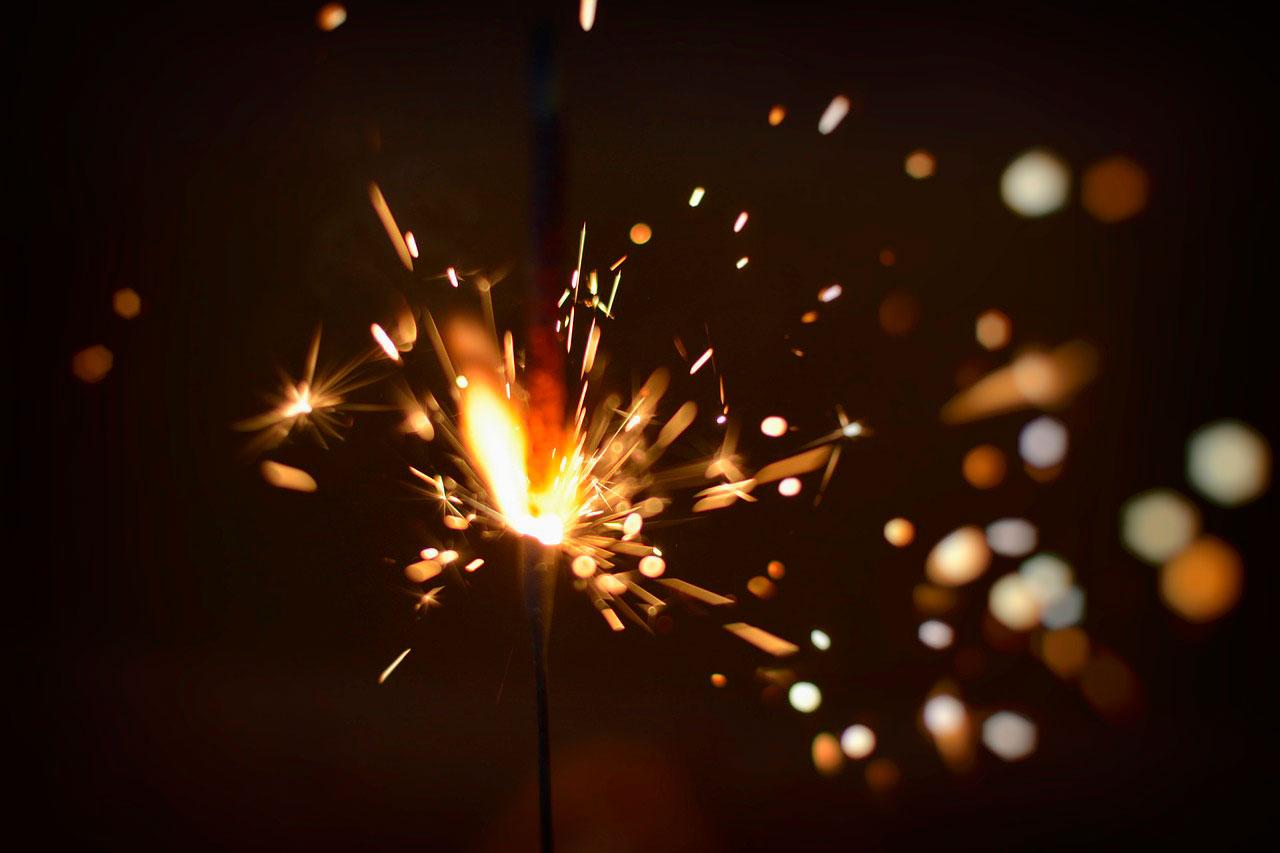 Cães e fogos de artifícios | O que fazer para acalmar o cão