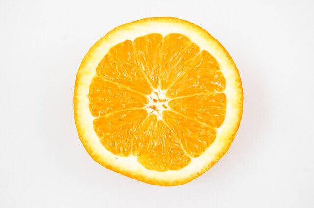 Os cães podem comer laranjas?
