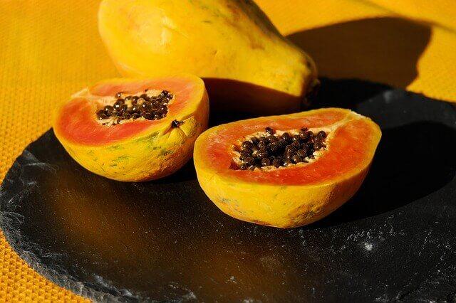 Os cães podem comer mamão papaia?