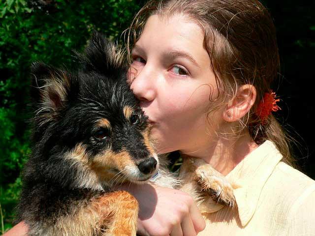 Cães de terapia para crianças com dificuldades de aprendizagem
