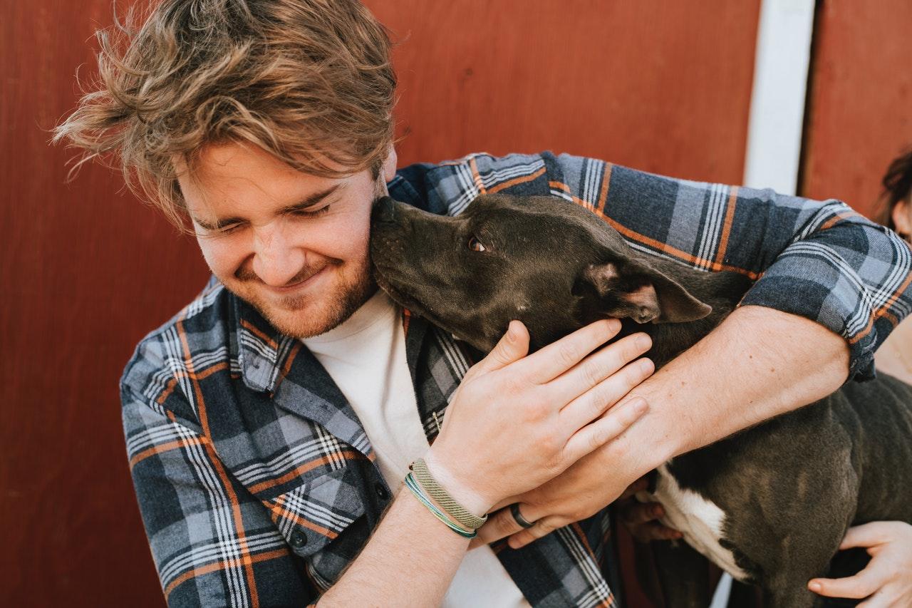 Como os cães escolhem sua pessoa favorita