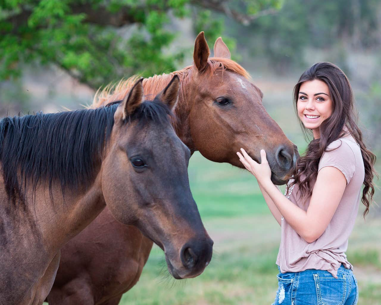 Ensine seu cavalo para dar um beijo