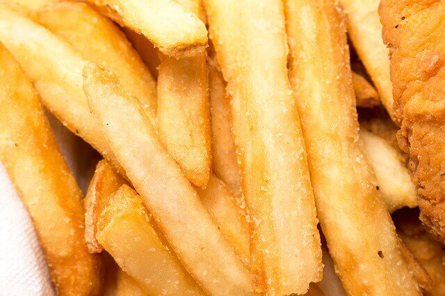 Gatos podem comer batatas fritas?