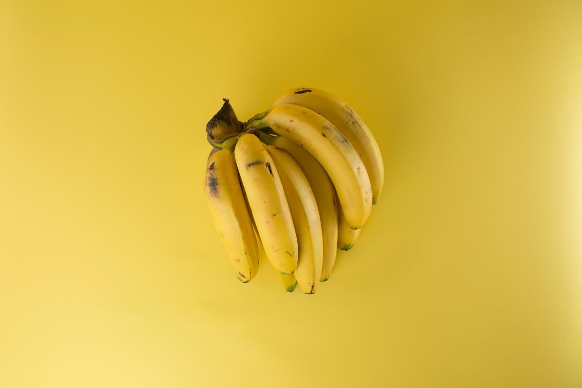 Hamsters podem comer bananas?