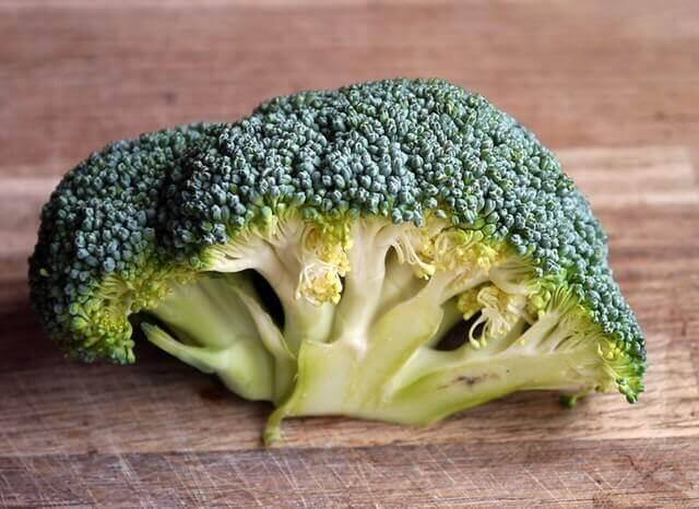 Lista de frutas e legumes que os cães podem comer