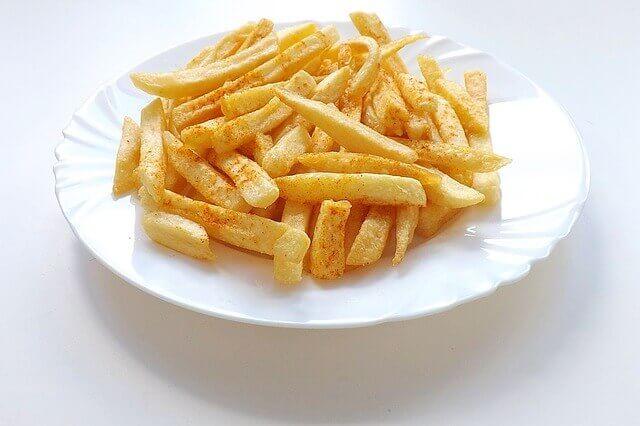 Meu cachorro pode comer batata frita?