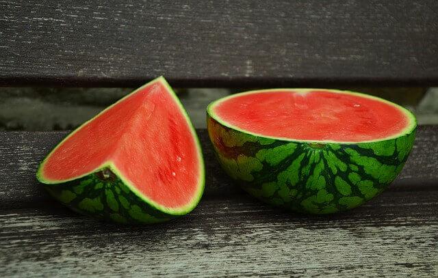 Meu cachorro pode comer melancia?