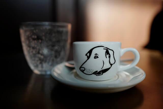Meu cachorro pode tomar café?