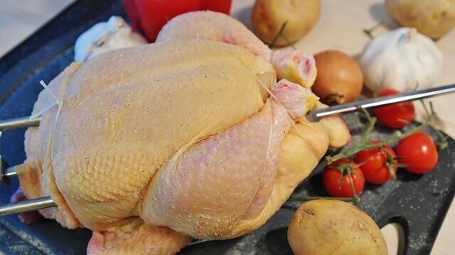 O fígado de frango é ruim para cães?