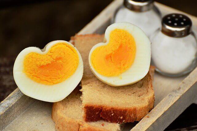 O incrível ovo comestível: nutricional ou mortal para animais de estimação?