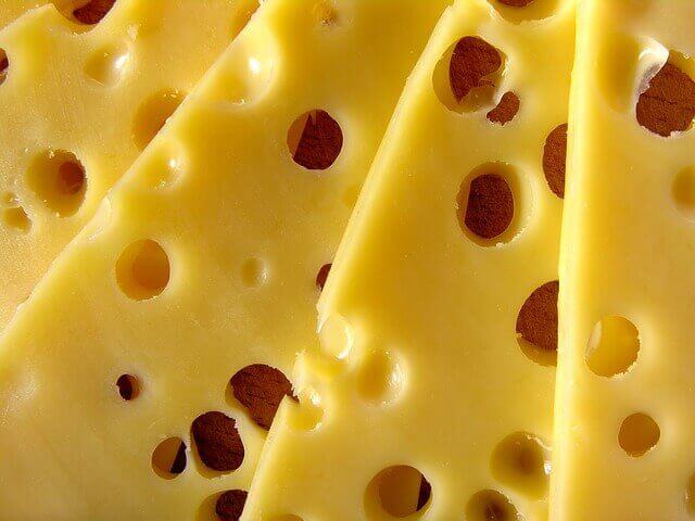 O meu gato pode comer queijo?
