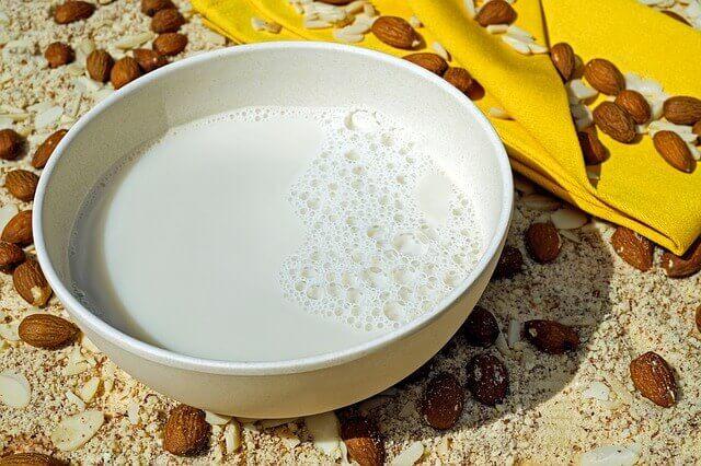 Os animais de estimação podem tomar leite de amêndoa ou leite de soja?