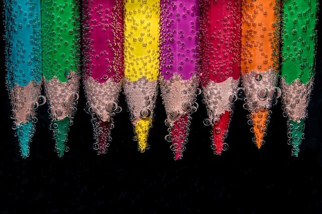 Quais as cores que os cães enxergam?