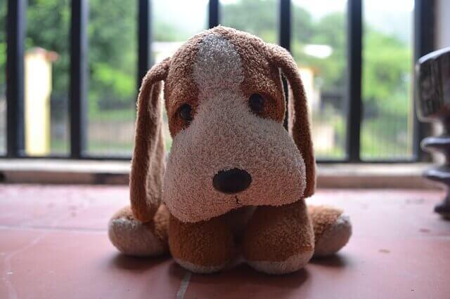 Síndrome de Cushing em cães